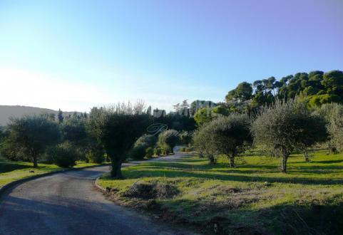 Terreno di lusso in vendita MOUGINS, 45000 m²