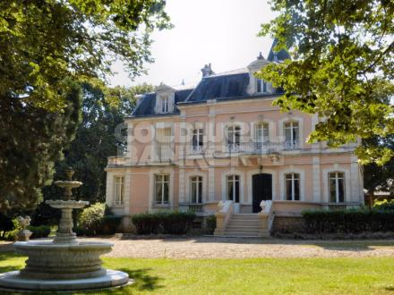 Luxury Castle for sale SAINT FARGEAU, 450 m², 7 Bedrooms, € 950 000