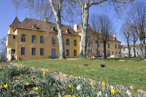 Château / Manoir de luxe à vendre ROANNE, 850 m², 9 Chambres, 1850000€
