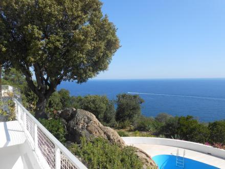 Luxus-Liegenschaft zu verkaufen SARI SOLENZARA, 450 m², 8 Schlafzimmer