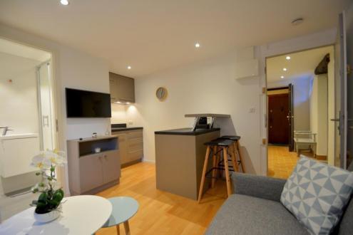 Appartement de luxe à louer ANNECY, 15 m²