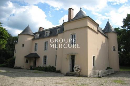 Château / Manoir de luxe à vendre CHATILLON SUR SEINE, 320 m², 6 Chambres