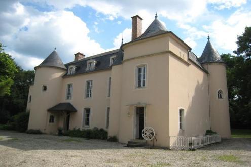 Château / Manoir de luxe à vendre CHATILLON SUR SEINE, 320 m², 6 Chambres, 780000€