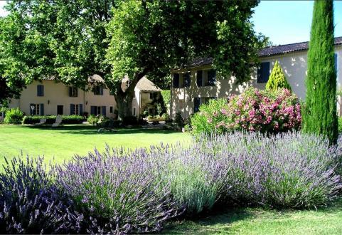 Propriété de luxe à vendre AVIGNON, 840 m², 13 Chambres