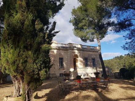 Castello/Maniero di lusso in vendita SAINT REMY DE PROVENCE, 800 m², 11 Camere, 2950000€