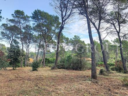 Terreno di lusso in vendita MOUGINS, 7250 m², 2330000€