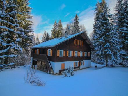 Chalet de luxe à vendre MORILLON, 380 m², 9 Chambres, 795000€