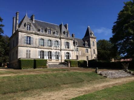 Château / Manoir de luxe à vendre SAINT SAUVEUR EN PUISAYE, 375 m², 7 Chambres