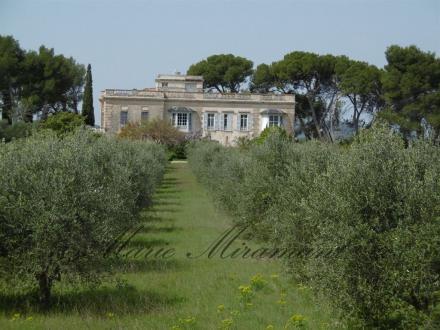 Luxe Huis te koop SAINT REMY DE PROVENCE, 500 m², 2950000€