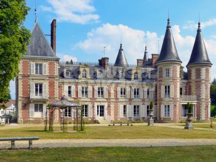 Château / Manoir de luxe à vendre FONTAINEBLEAU, 1370 m², 21 Chambres, 3250000€