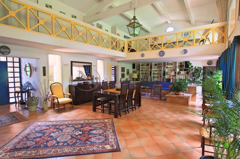 vente maison de luxe aix en provence 5 pi ces 380 m2 1 290 000. Black Bedroom Furniture Sets. Home Design Ideas