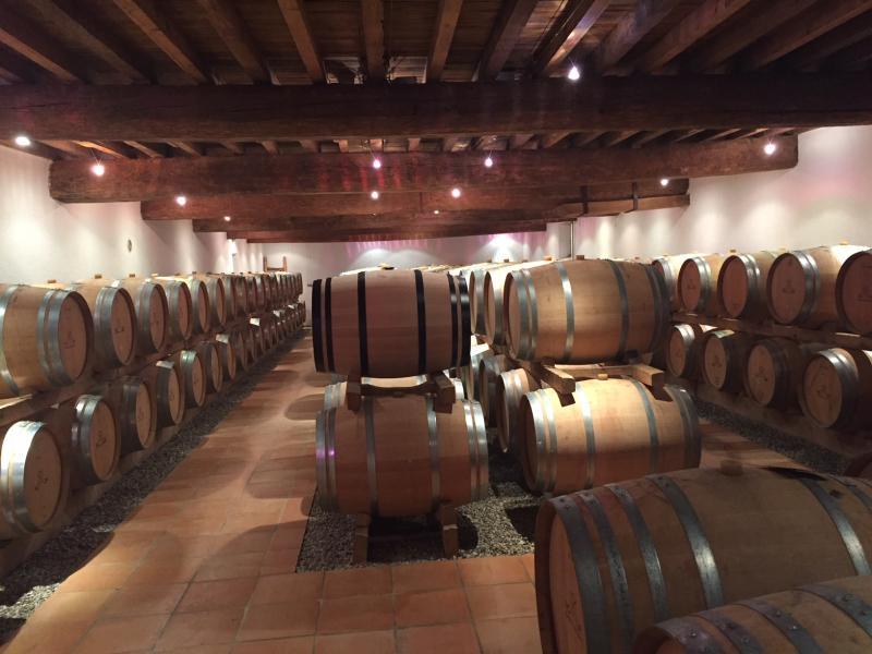 Propriété équestre et viticole de prestige BORDEAUX, 1000 m², 8 Chambres