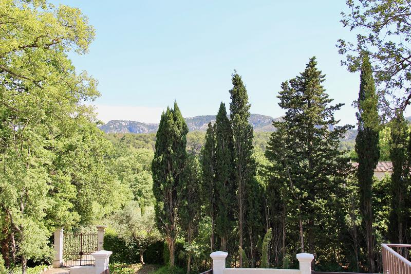 Luxury House for rent SAINT REMY DE PROVENCE, 280 m², 6 Bedrooms,