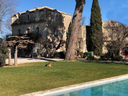 Maison de luxe à vendre MONTPELLIER, 550 m², 6 Chambres, 3950000€
