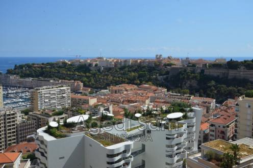 Appartement de luxe à vendre Monaco, 204 m², 2 Chambres, 6000000€