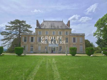 Château / Manoir de luxe à vendre NEVERS, 700 m², 13 Chambres, 745000€