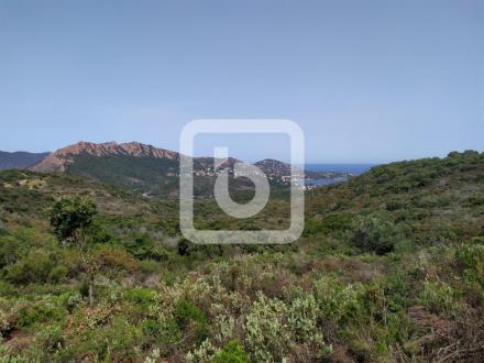 Luxus-Grundstück zu verkaufen SAINT RAPHAEL, 995000€