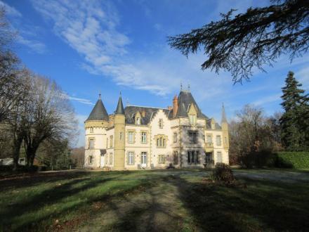 Château / Manoir de luxe à vendre VICHY, 680 m², 11 Chambres, 1664000€