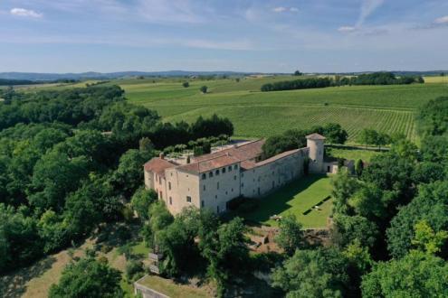 Château / Manoir de luxe à vendre TOULOUSE, 850 m², 18 Chambres, 2650000€
