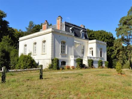 Château / Manoir de luxe à vendre FERCE, 305 m², 5 Chambres, 599960€