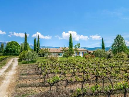 Luxury Vineyard/equestrian property for sale VAUCLUSE, 282 m², 5 Bedrooms, €1639999