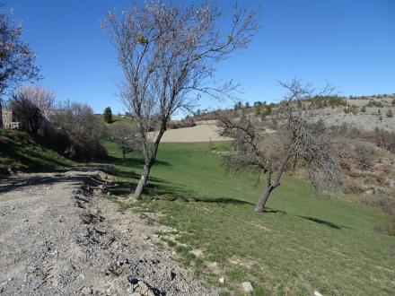 Terreno di lusso in vendita SIGOYER, 280000€