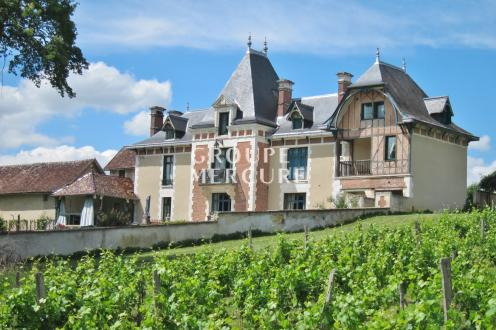 Luxe Kasteel/landhuis te koop AUXERRE, 800 m², 16 Slaapkamers, 980000€