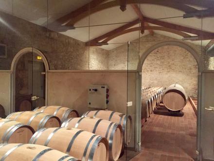 Luxe Wijngaard/manege te koop BORDEAUX, 600 m²