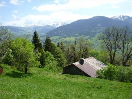 Luxus-Farm zu verkaufen PRAZ SUR ARLY, 300 m², 1 Schlafzimmer, 840000€