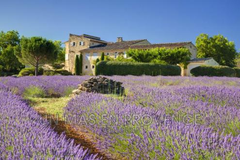Luxury House for rent BONNIEUX, 6 Bedrooms,