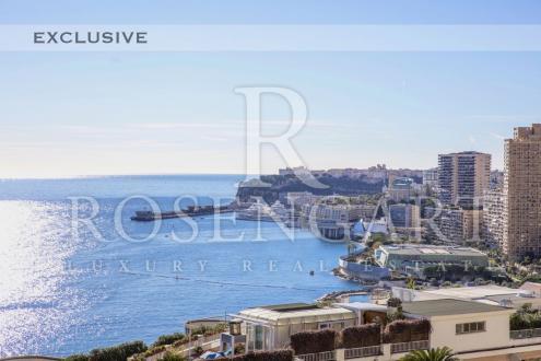 Luxus-Wohnung zu verkaufen Monaco, 360 m², 5 Schlafzimmer