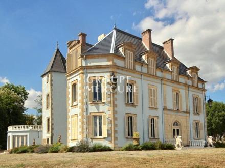 Château / Manoir de luxe à vendre NEVERS, 600 m², 5 Chambres, 980000€