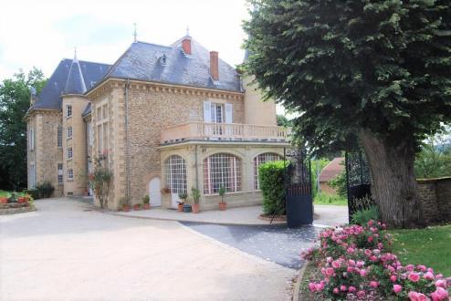 Luxus-Haus zu verkaufen VIENNE, 600 m², 7 Schlafzimmer, 1365000€