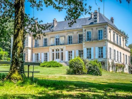 Château / Manoir de luxe à vendre JAZENEUIL, 721 m², 8 Chambres, 1350000€