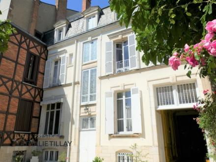 Hôtel particulier de luxe à vendre ORLEANS, 471 m², 6 Chambres, 1040000€