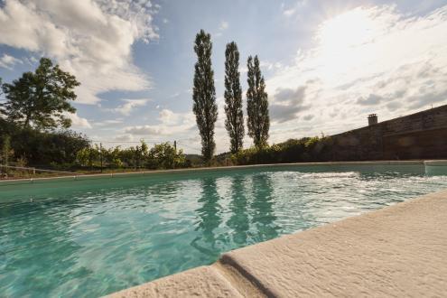 Propriété de luxe à vendre BAINS LES BAINS, 6750 m², 35 Chambres, 2231250€