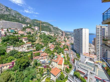 Квартира класса люкс на продажу  Монако, 25 м², 1600000€