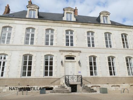 Hôtel particulier de luxe à vendre ORLEANS, 520 m², 1092000€