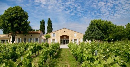 Luxe Wijngaard/manege te koop BORDEAUX, 800 m², 8925000€
