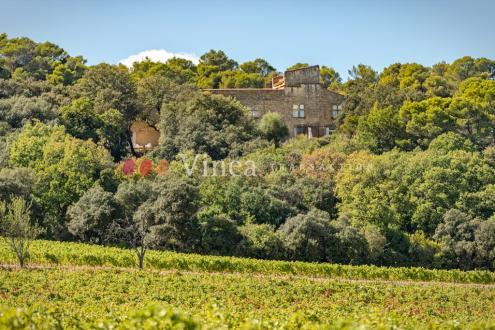 Luxus-Weingut / Reiterhof zu verkaufen AVIGNON, 200 m², 2150000€