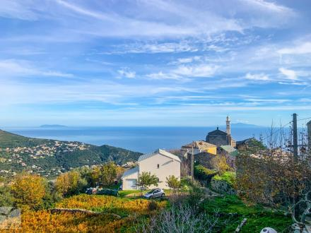 Luxe Terrein te koop SAN MARTINO DI LOTA, 110000€
