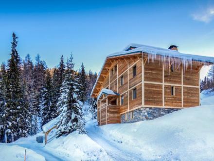 Chalet de luxe à vendre LA PLAGNE, 400 m², 10 Chambres, 1190000€