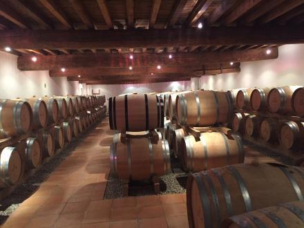 Luxe Wijngaard/manege te koop BORDEAUX, 1000 m², 8 Slaapkamers