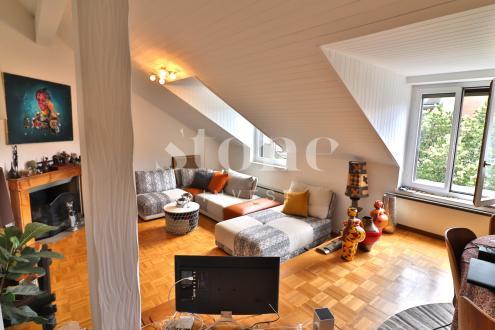 Luxus-Wohnung zu vermieten Carouge, 120 m², 4400CHF/monat