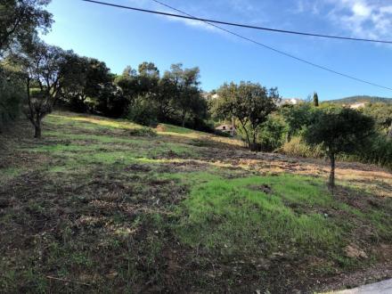 Terreno di lusso in vendita LES ISSAMBRES, 420000€