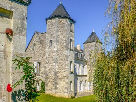 Château / Manoir de luxe à vendre CENON SUR VIENNE, 340 m², 6 Chambres, 565000€