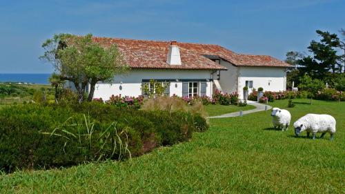Maison de luxe à louer SAINT JEAN DE LUZ, 400 m², 6 Chambres,