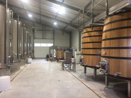 Luxe Wijngaard/manege te koop BORDEAUX, 800 m²