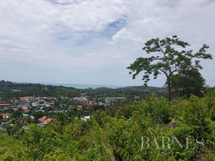Luxus-Grundstück zu verkaufen Thailand, 3084 m², 517063€