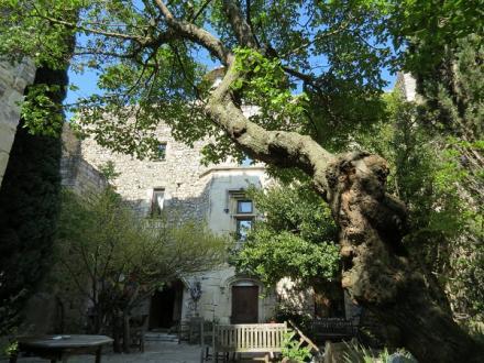 Château / Manoir de luxe à vendre SAVASSE, 300 m², 4 Chambres, 580000€